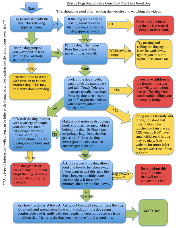 Flow Chart To A Good Dog Rescue Dogs Responsibly